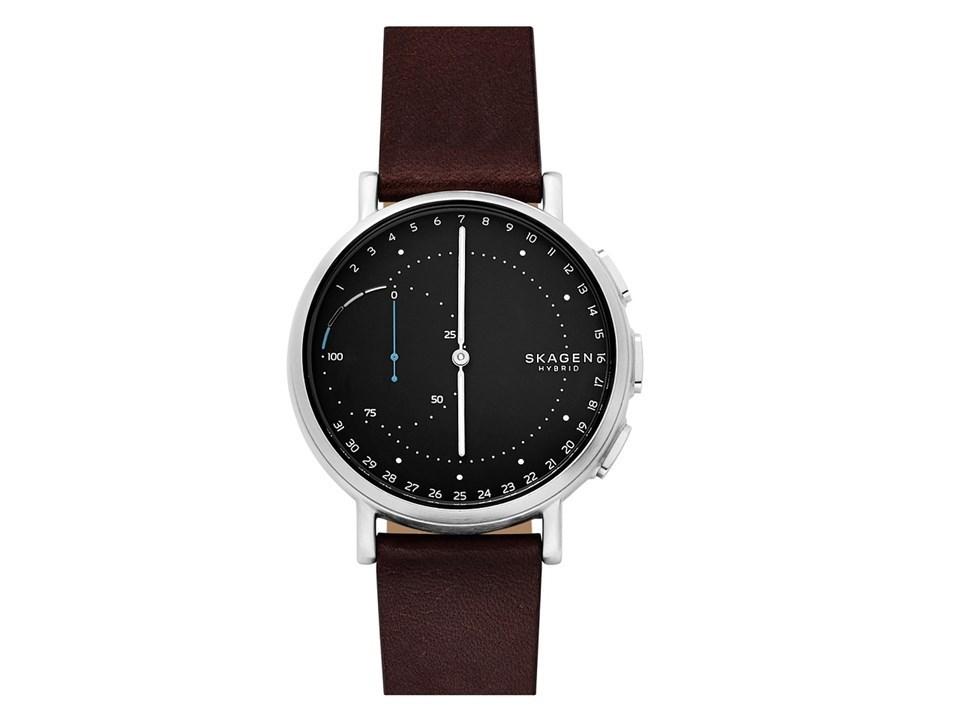 Skagen SKT1111 The Signatur Connected Hybrid Smartwatch ...